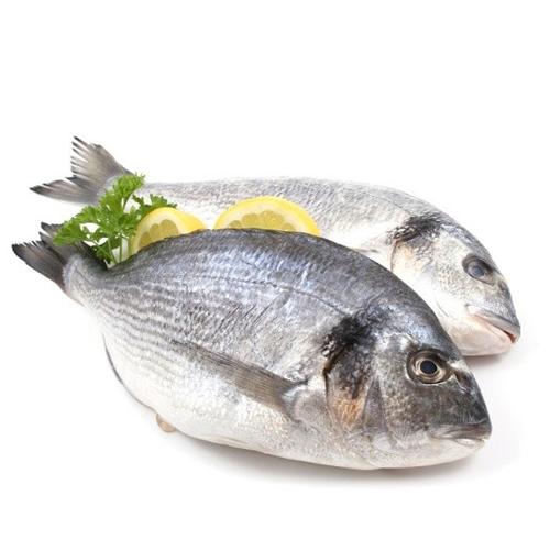 aplicacion-carnes-pescado