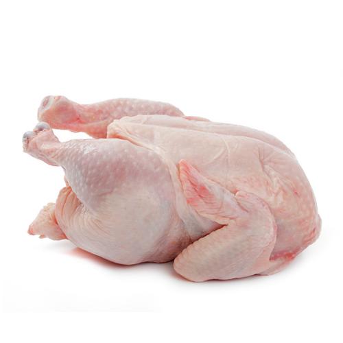 aplicacion-carnes-pollo